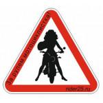 """Наклейка """"Мотоциклист за рулем"""" Мотоледи"""